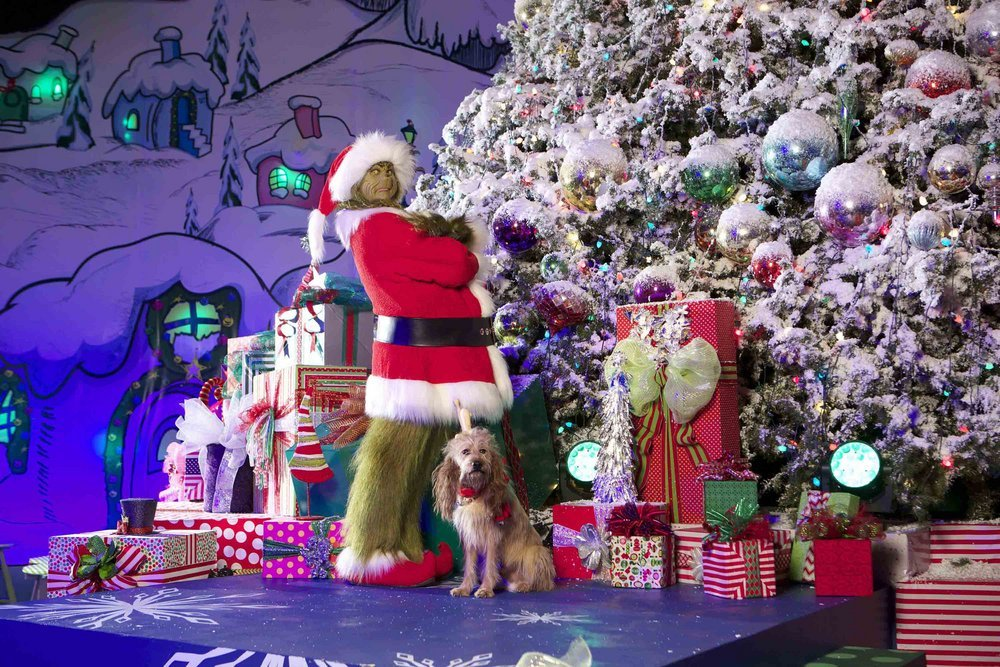 "UNIVERSAL STUDIOS HOLLYWOOD — ""Grinchmas"" — Pictured: Universal Studios Hollywood Rings in the Holiday Season with ""Grinchmas,"" Merry Mischievous Minions and Delicious, All-New Hot Butterbeer, as Universal CityWalk Decks the Hall with Free Concerts and Special Appearances by Saint Nick — (Photo by: David Sprague/Universal Studios Hollywood)"
